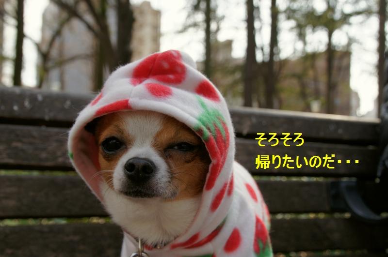 12_20120206212113.jpg