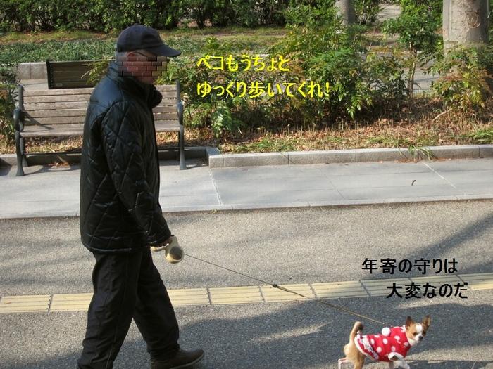 12_20120304172818.jpg