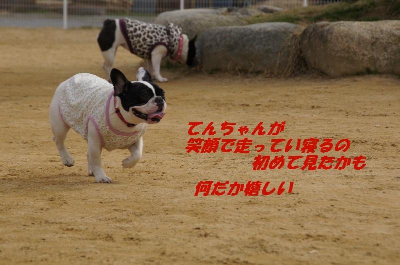14_20110222173354.jpg