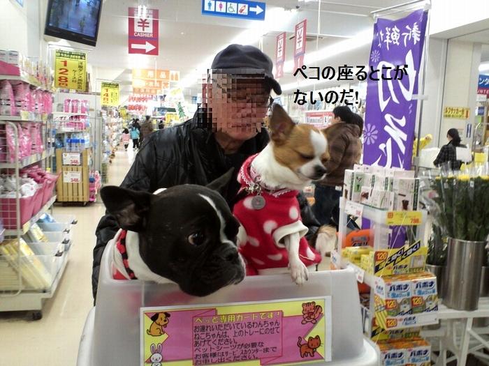 15_20120304173201.jpg