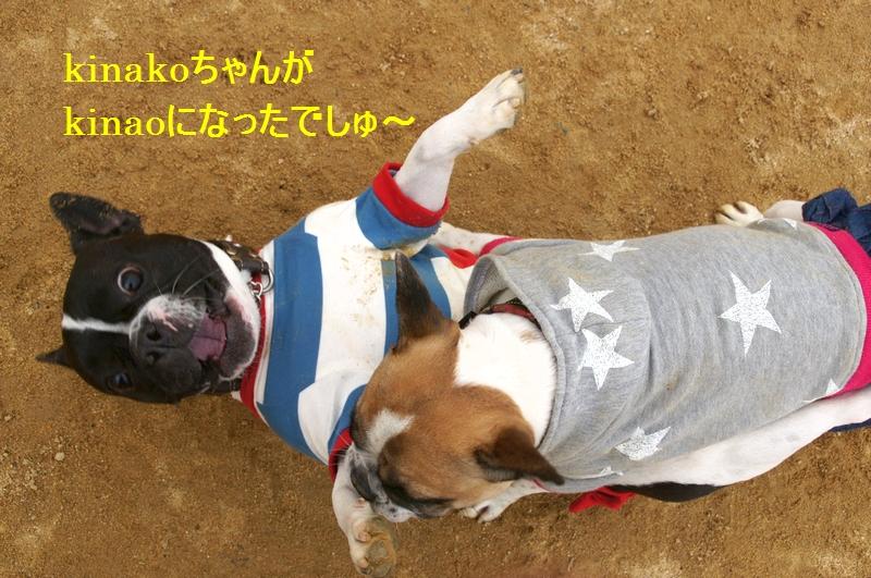 19_20120310083715.jpg