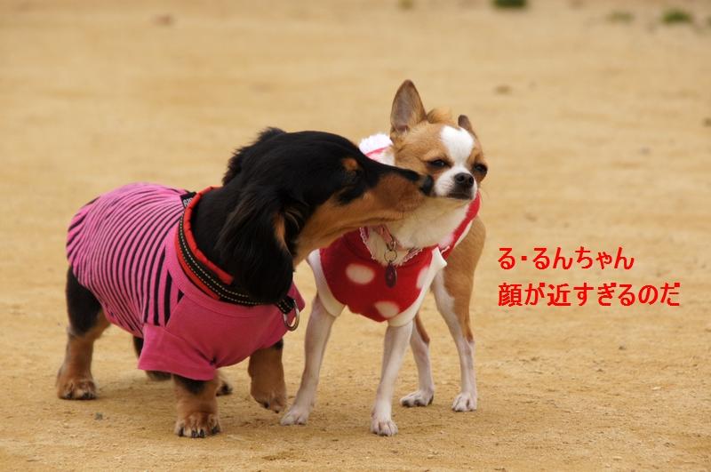 19_20120326225411.jpg
