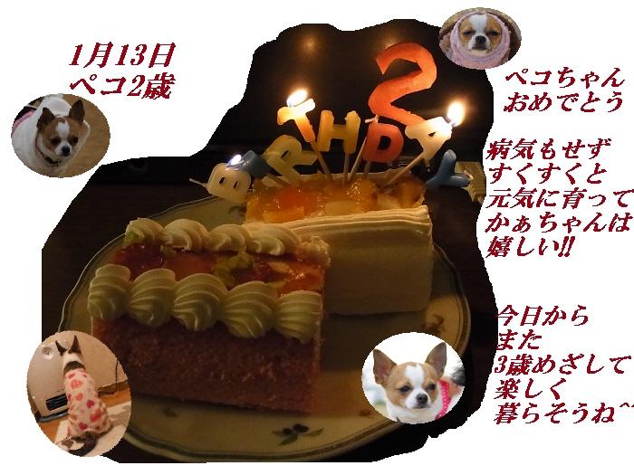 1_20110113190444.jpg