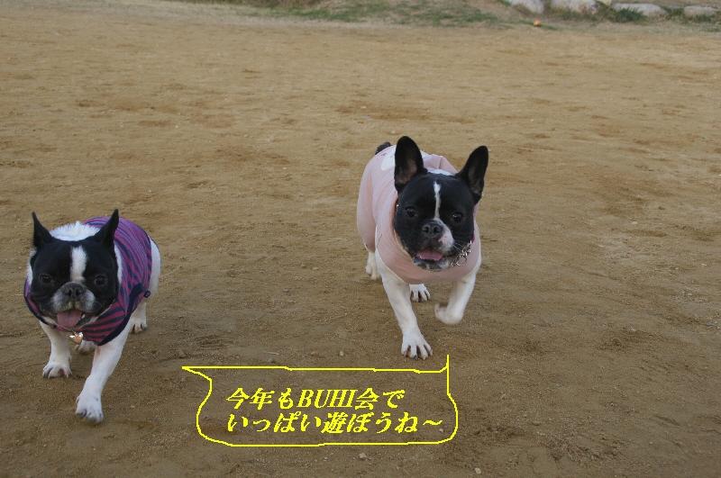 20_20110104081059.jpg