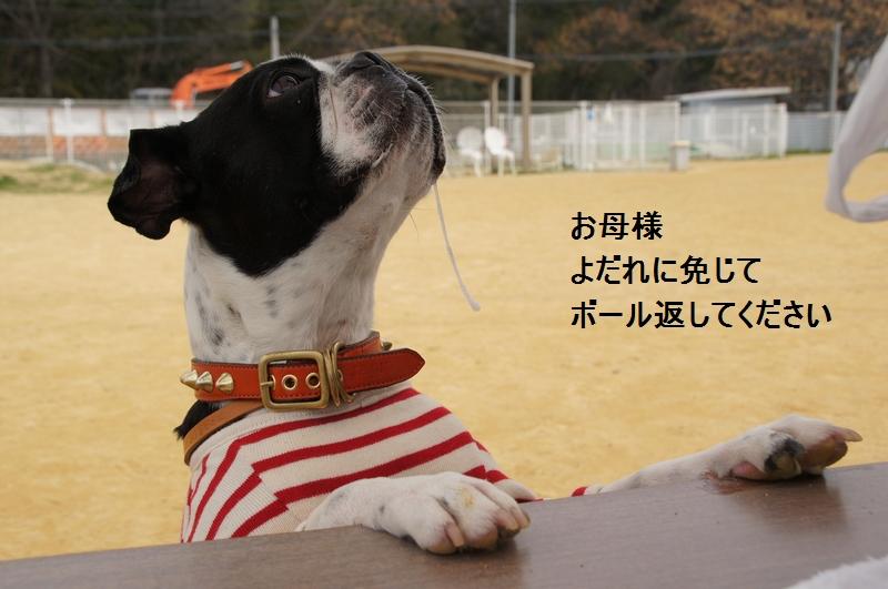 25_20120326225644.jpg