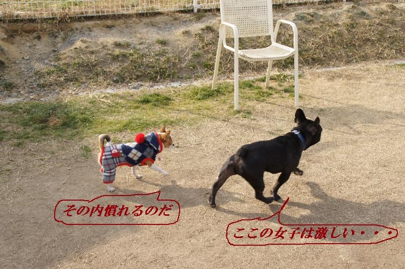 28_20110201105118.jpg