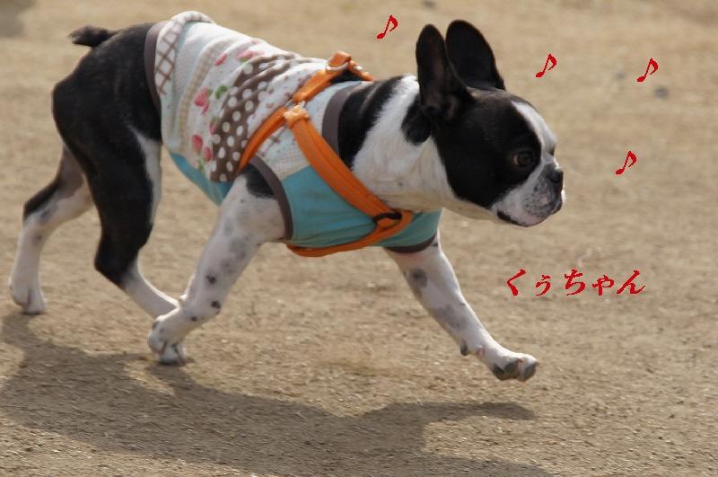2_20110201104819.jpg