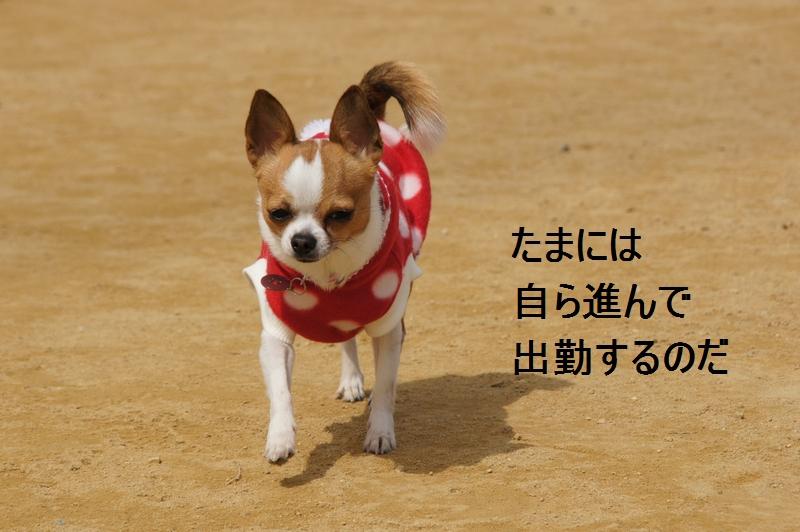 2_20120326223824.jpg