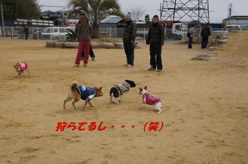3_20110222173208.jpg