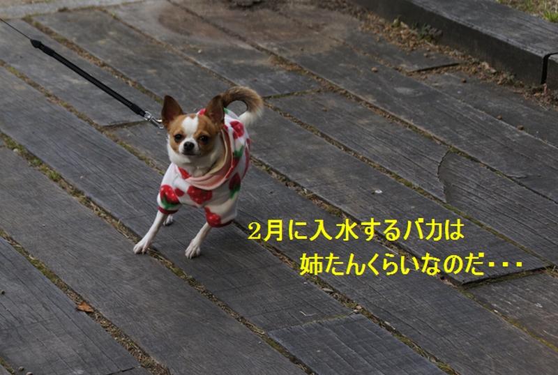 6_20120206211620.jpg