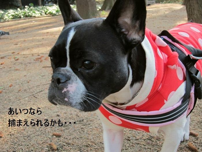 9_20120304172423.jpg