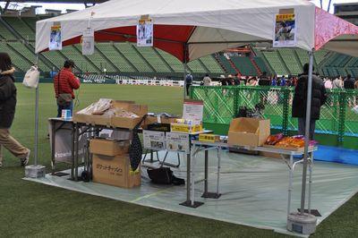 2010.12.23 Dogs SHIPPO Festa 001