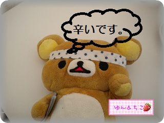 ちこちゃん日記71★作ってみました★-4