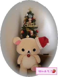 ちこちゃん日記★115★クリスマスイブでしゅね♪-1