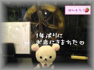 ちこちゃん日記★117★お久しぶりなの~-1