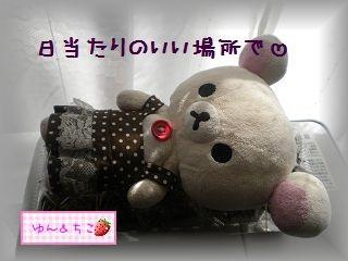ちこちゃんの観察2012★2★上手くできるかな??-5