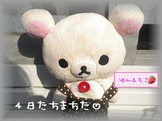 ちこちゃんの観察日記2012★3★謎の野菜の観察-1