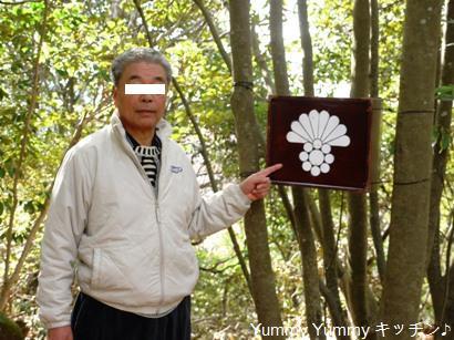 湯浅城跡九曜紋の箱