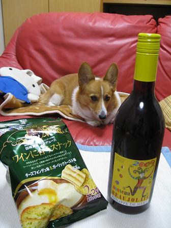 ワインとプー11.19