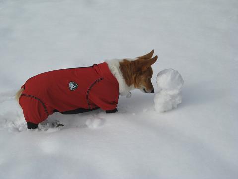 雪だるまとプー1.17