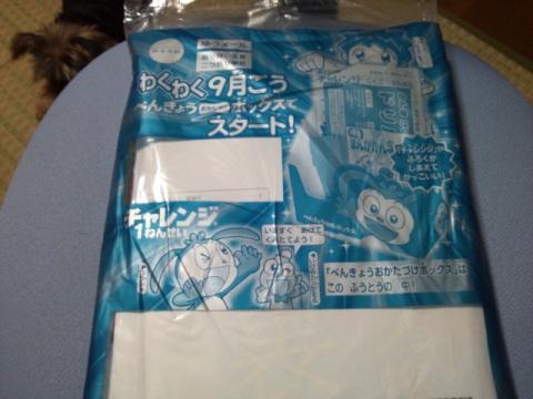 DSC_0027_convert_20110822011733.jpg
