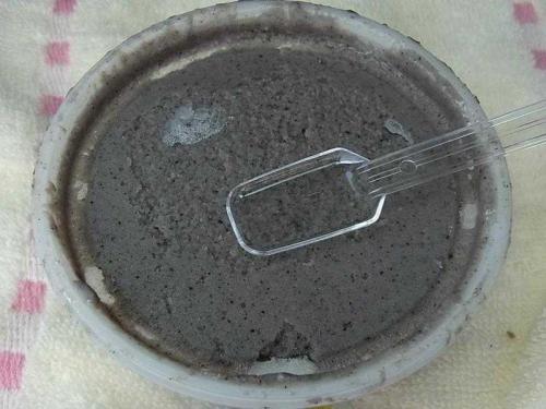 黒ごまアイス