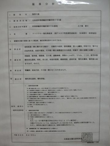 2011年7月 民宿ちるい 温泉分析表2