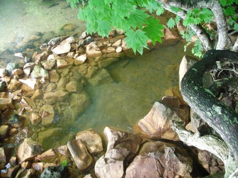 2011年7月 奥の湯2
