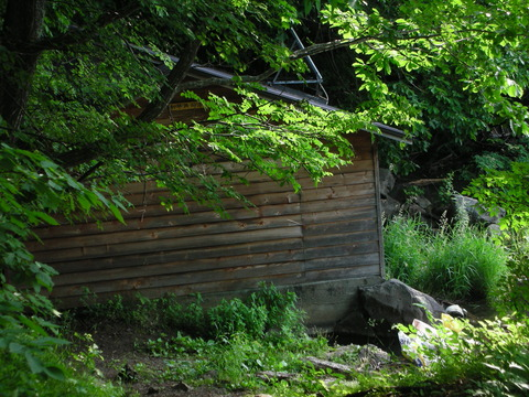 2011年7月 和琴共同浴場1