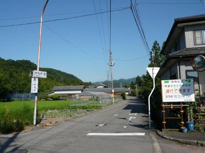P1000947.jpg