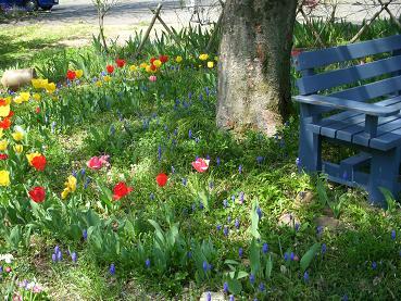 garden20110428mini02.jpg