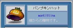 mottin1.jpg