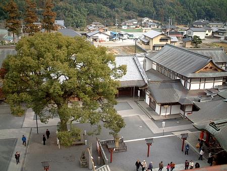 20060219_02.jpg