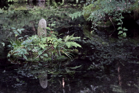 20090913_15.jpg