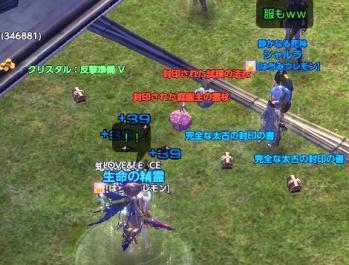 tera20111020-41.jpg
