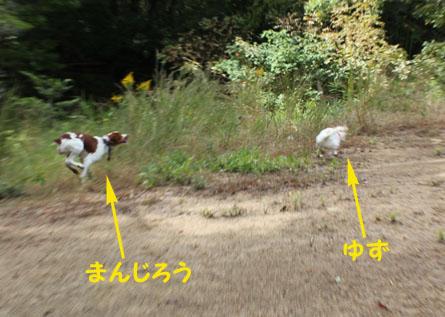 20111023-01.jpg