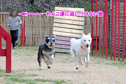 IMG_6339-2.jpg