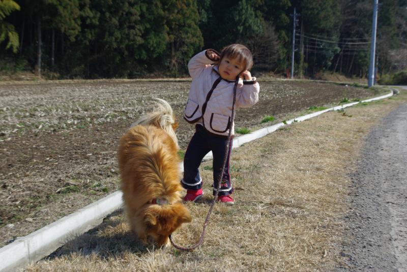 モモの散歩♪