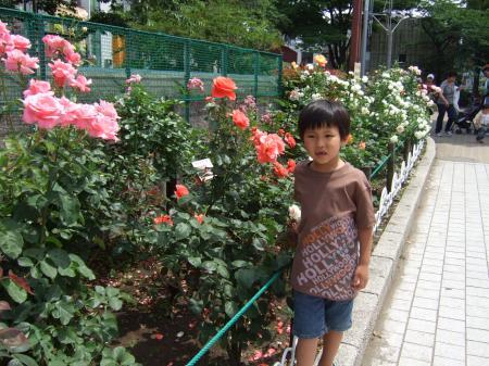 1006060018_convert_20100607204008.jpg