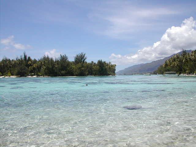 Tahiti20029.jpg