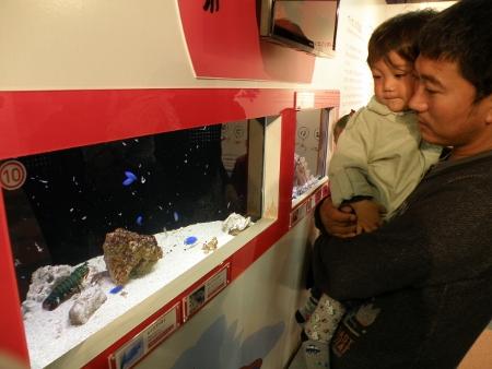 Japan visit 2011 (62) (450x338)