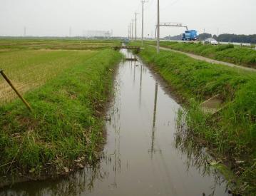 Nagareyama_05.jpg