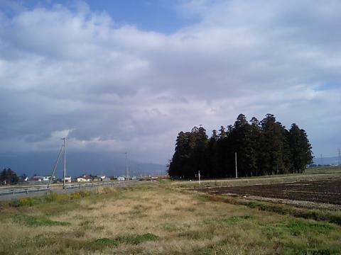 廣瀬神社1:鎮守の森