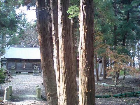 廣瀬神社8