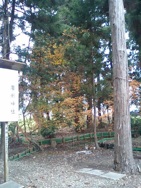 廣瀬神社19