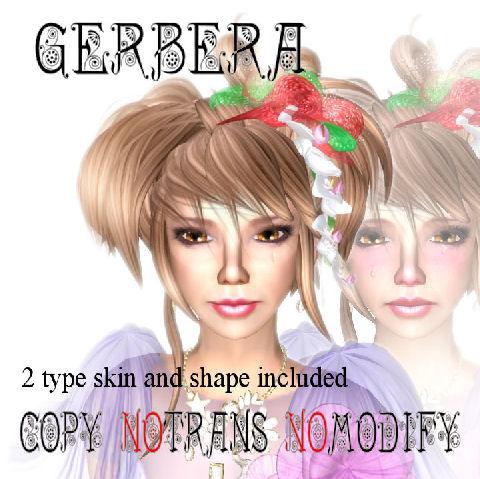 Gerbera skin panel 2