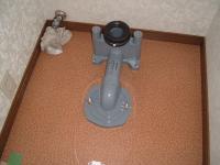 DSCF3944_convert_20110315190747.jpg