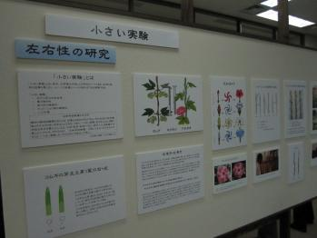 kihara_0006.jpg