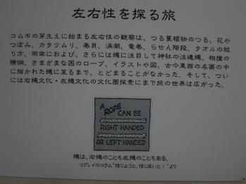 kihara_0008.jpg