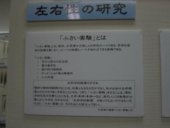 kihara_0010.jpg